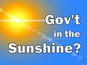 Government in the Sunshine?