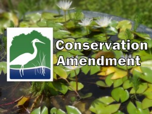 Conservation Amendment title