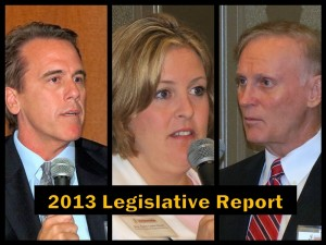 2013 Legislative Report title